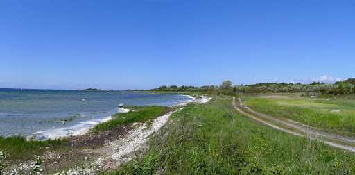 2015-05-29 009_008(Gotland)c.jpg