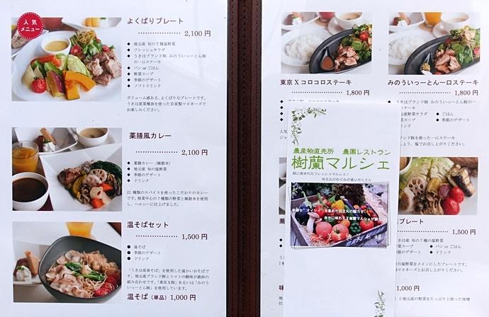 66日本九州自由行 日本威尼斯 柳川遊船  蒸籠鰻魚飯  みのう山荘-若竹屋酒造場