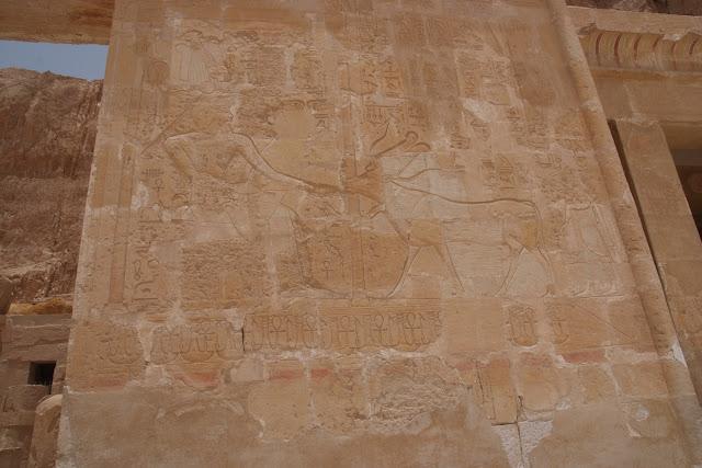 فى مصر الرجل تدب مكان ماتحب ( خاص من أمواج ) 100607-112830-f