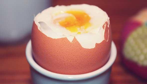 Egg 722847