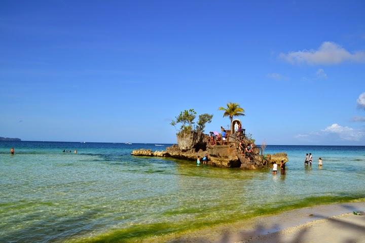 ボラカイ島のウィリーズロック周辺の海藻