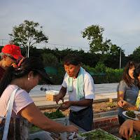 010514 Celebration Of Harvest