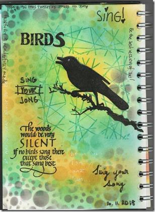 NG16 BIRDS