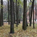 Studentu festivāls 2016, Valmiera - IMG_2111.jpg