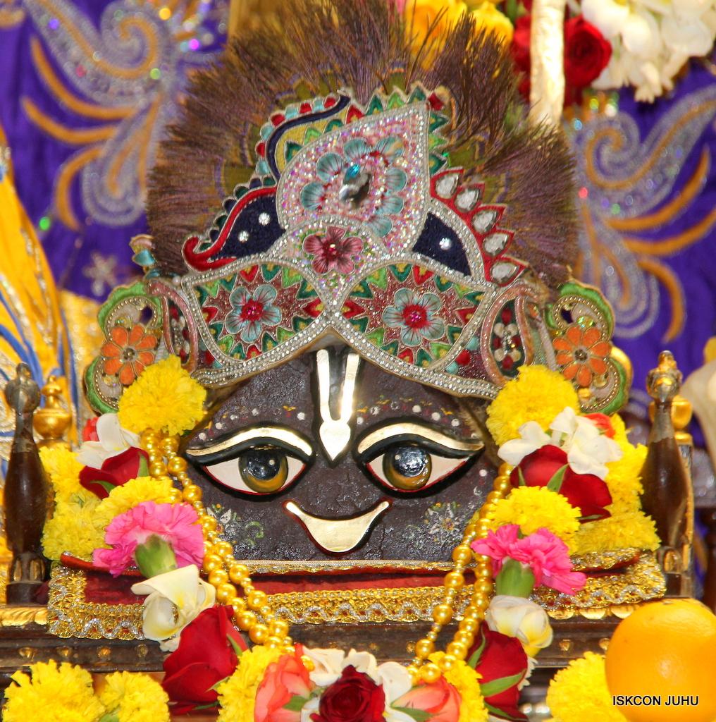 ISKCON Juhu Sringar Deity Darshan on 7th Sep 2016 (67)