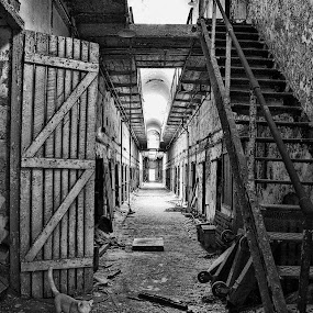 Aged cells by Charles Anderson Jr - Buildings & Architecture Public & Historical (  )