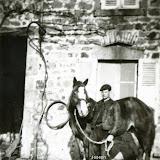 1950-portal.jpg