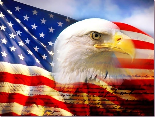 bald_eagle_head_and_american_flag1[4]