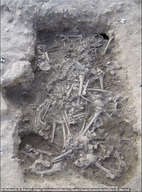 """Mass grave of 25 Christian soldiers who were ''decapitated"""" during a 13th century Crusade is unearthed in Lebanon (photos)"""