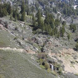 Mineral Basin, Alpine, Utah 2004