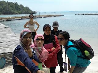 Lumba -lumba di pulau Mencaras Batam