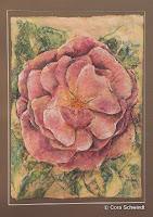 'Rose rosa', Pastell auf Himalaya-Papier, 50x69, 2000, verkauft