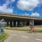 20180625_Netherlands_Olia_196.jpg