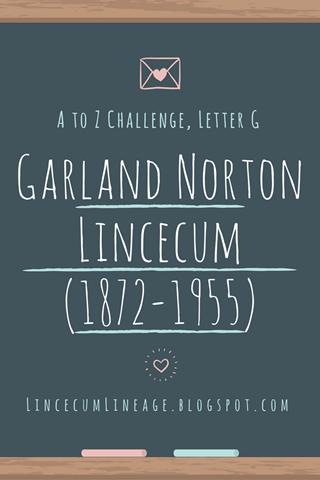 Individual Report - GNLincecum