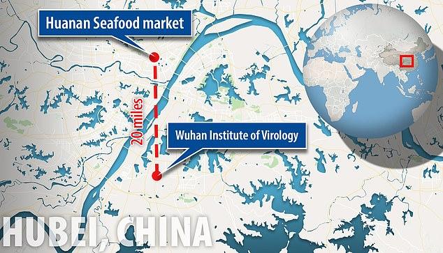 Virus Corona Berasal dari Laboratorium Senjata Biologis China?