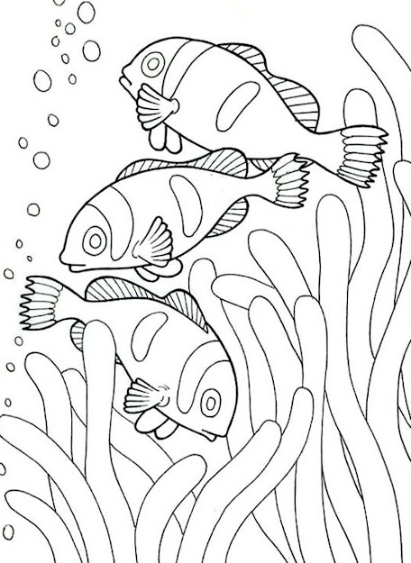 Nemo Sea Animal Coloring Pages Printable