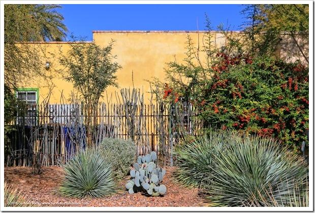 151229_Tucson_0058
