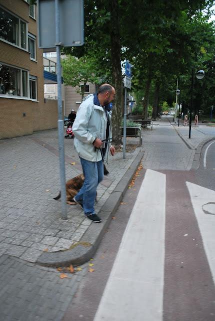 KNON-honden in Emmen - DSC_0784.JPG