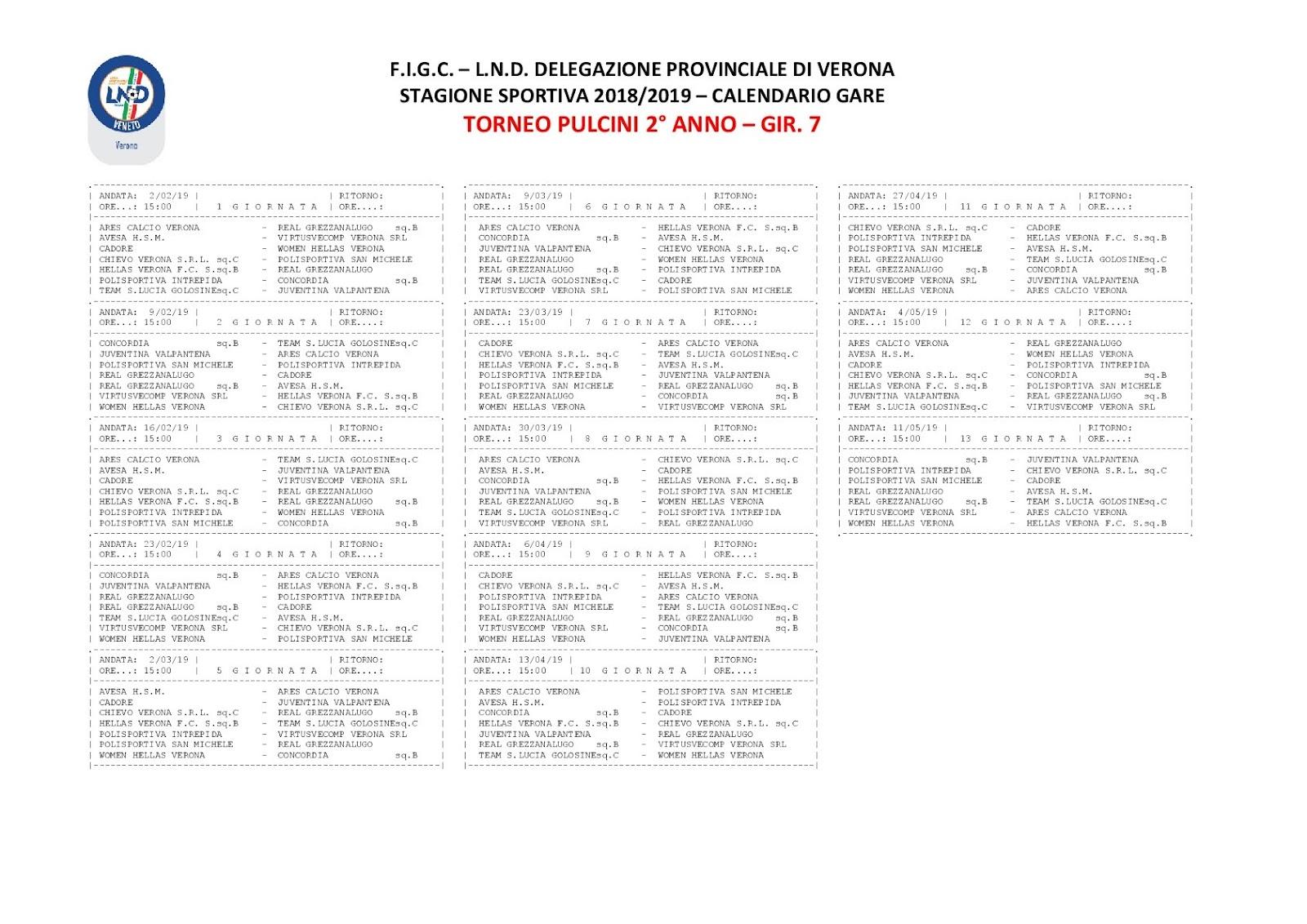 Calendario Torneo A 7 Squadre.Pulcini Ahsm 1911