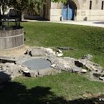 Château de Vincennes : vestiges de la fontaine du manoir