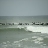 _DSC7234.thumb.jpg