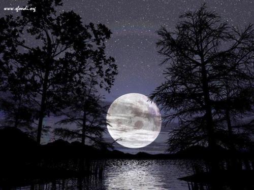 Cielo stellato al chiaro della luna