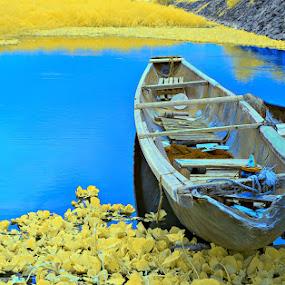 Bangka  by Boyet Lizardo - Landscapes Waterscapes ( d60, nikon, ir photography )