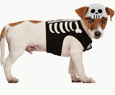Skeleton Dog Costume halloween top 10 pet costumes