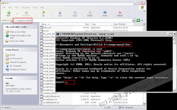 Управление на MYSQL от конзолата