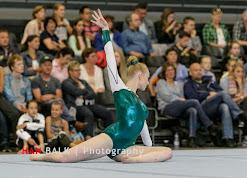 Han Balk Fantastic Gymnastics 2015-8377.jpg