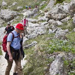 Wanderung Rosengarten 09.06.17-8841.jpg