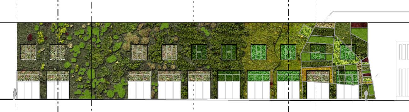Redactamos el proyecto de fachada vegetal del palacio de for Estructura para jardin vertical