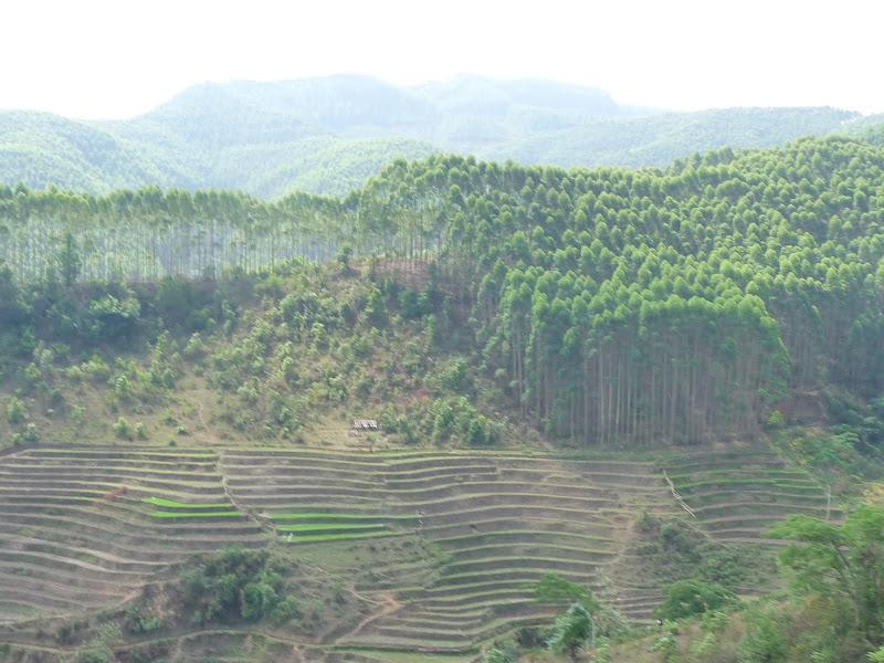 Chine . Yunnan..Galamba, Menglian Album A - Picture%2B140.jpg