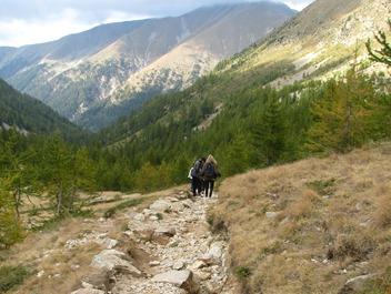 Alpine Trekking 16