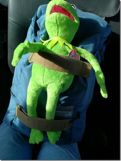 Kermit TY Plush