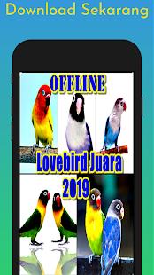 Download Lovebird Juara Offline 2019 For PC Windows and Mac apk screenshot 2