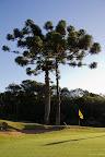 golf caixas-12.jpg