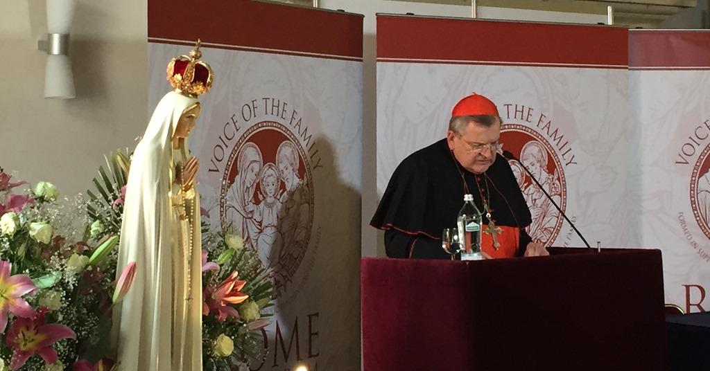 [Cardinal-Burke-Consecration-of-Russia%5B6%5D]
