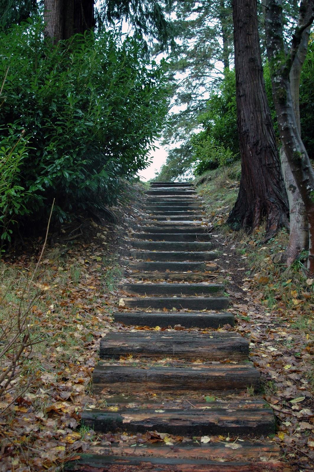 Creative Writing Prompts For Writers Irish Steps Creative
