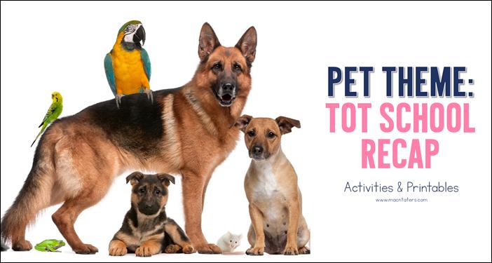 Pets Tot School Recap