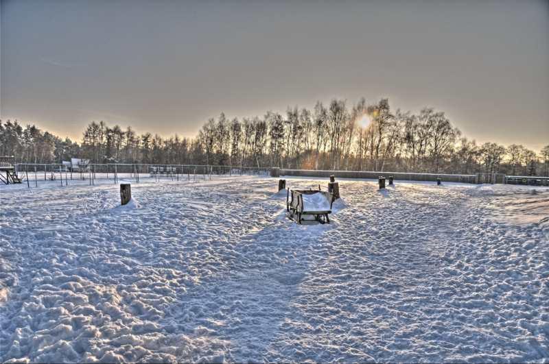 20110131 Winterliche Impressionen - Winter07.jpg