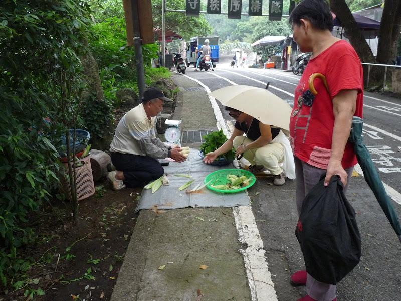 TAIWAN.Taipei Yangminshan, une des résidences de CKS - P1110832.JPG