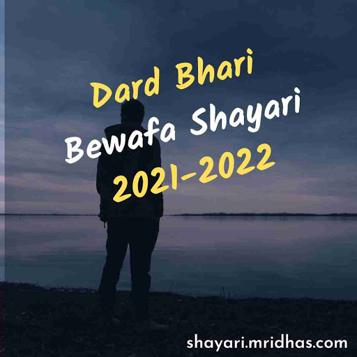 Dard Bhari Bewafa Shayari