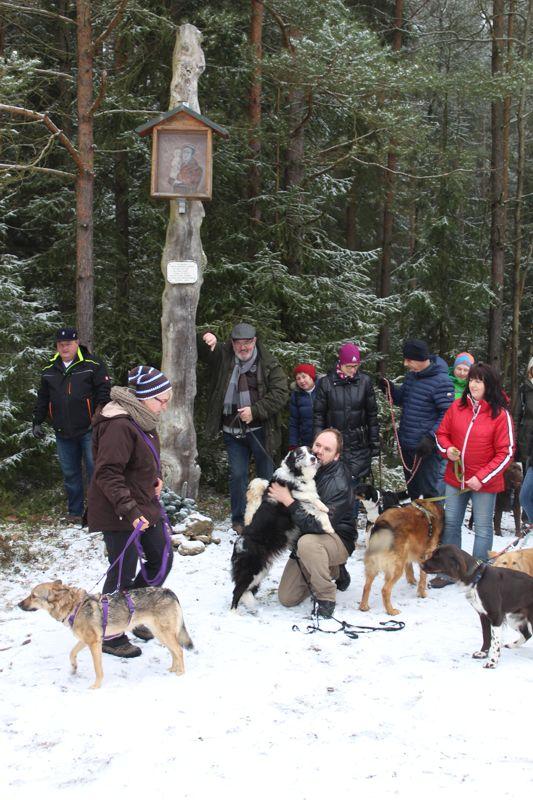 01. Januar 2016: Neujahrswanderung ins Waldnaabtal - IMG_1570.JPG