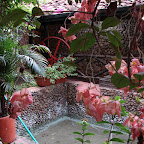 La poceta donde se bañó Bolivar