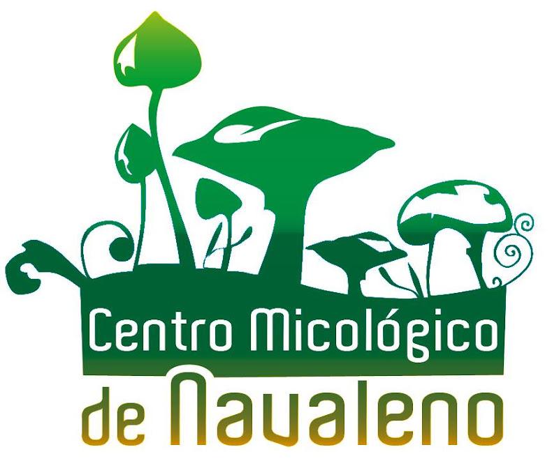 Centro Micológico