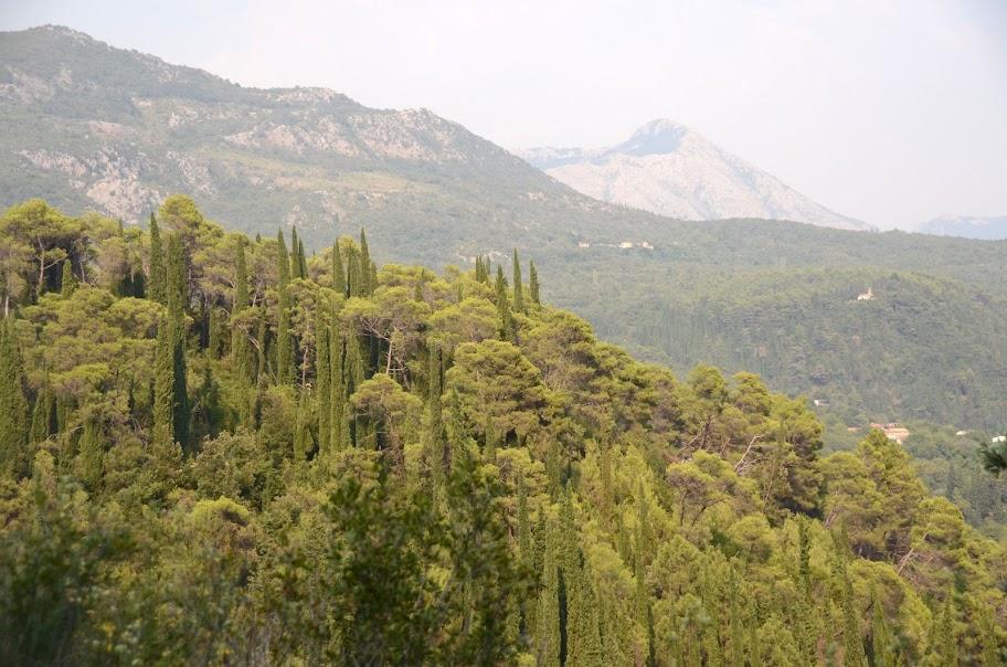 montenegro - Montenegro_490.jpg