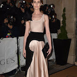 OIC - ENTSIMAGES.COM - Erin O'Connor at the Harper's Bazaar Women of the Year Awards in London  3rd  November 2015 Photo Mobis Photos/OIC 0203 174 1069