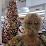 Lucrecia cavalcanti's profile photo