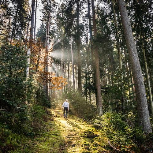 Calw-Holzbronn im Schwarzwald